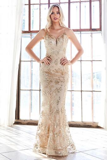 Cinderella Divine Style No. R2901