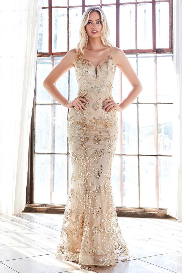 Cinderella Divine Style #R2901