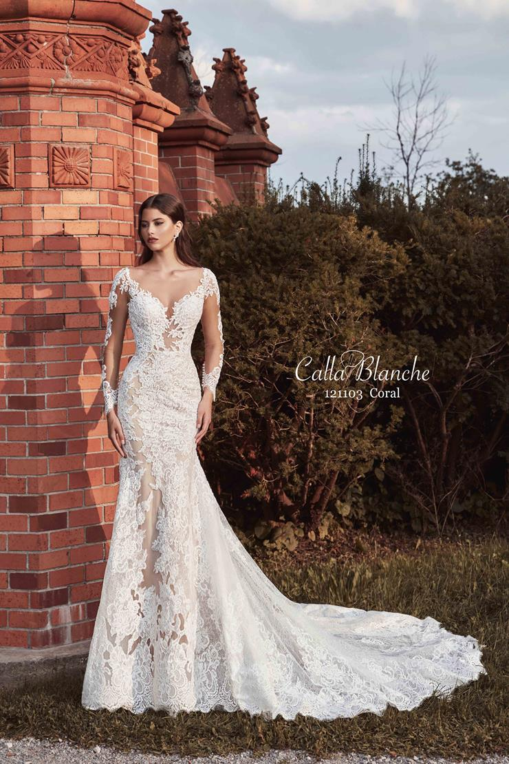 Calla Blanche Style #121103  Image