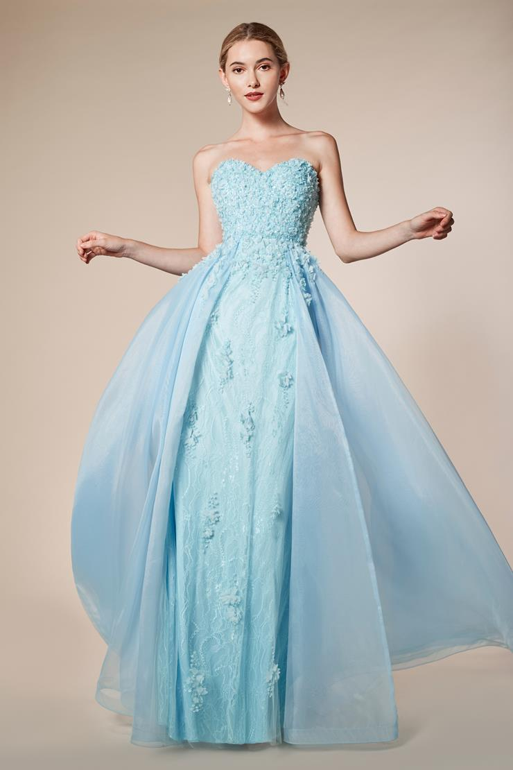 Andrea & Leo Couture Style #5261