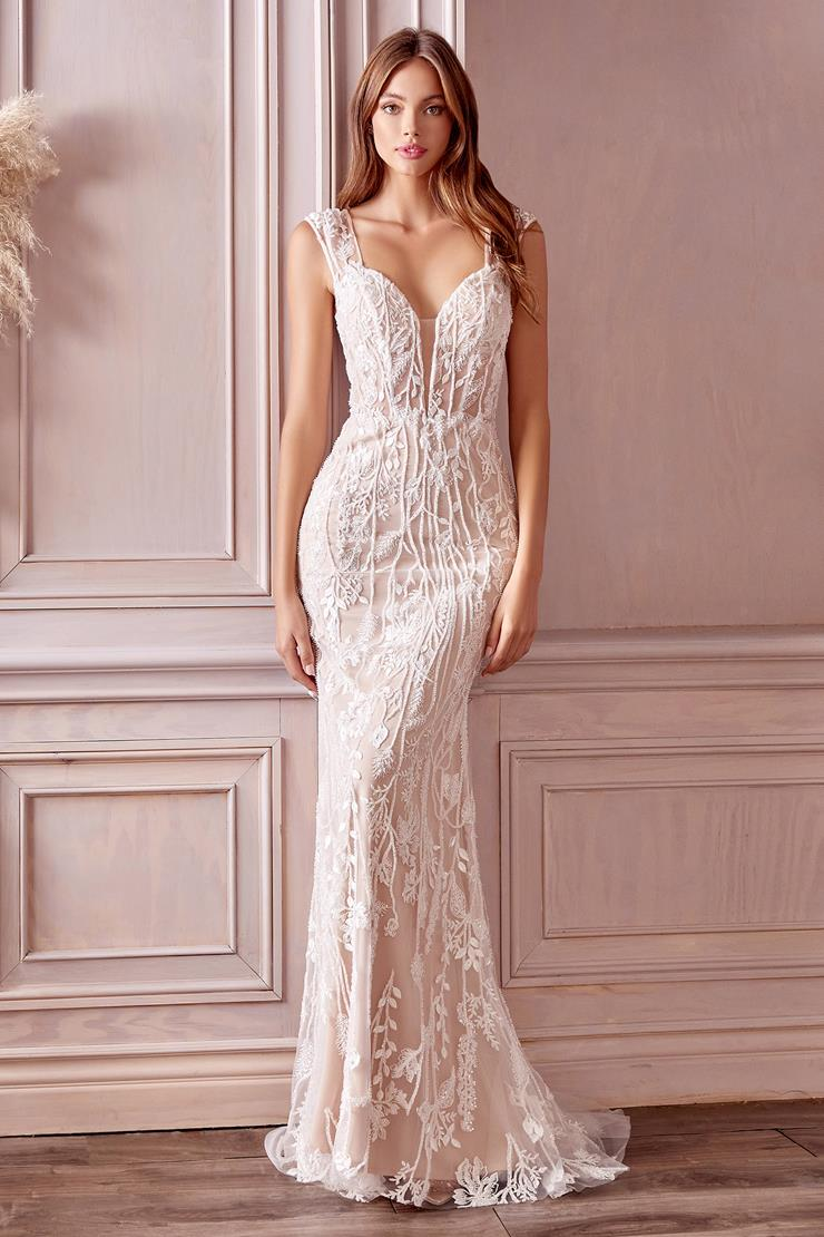 A&L Couture Style: A1020  Image