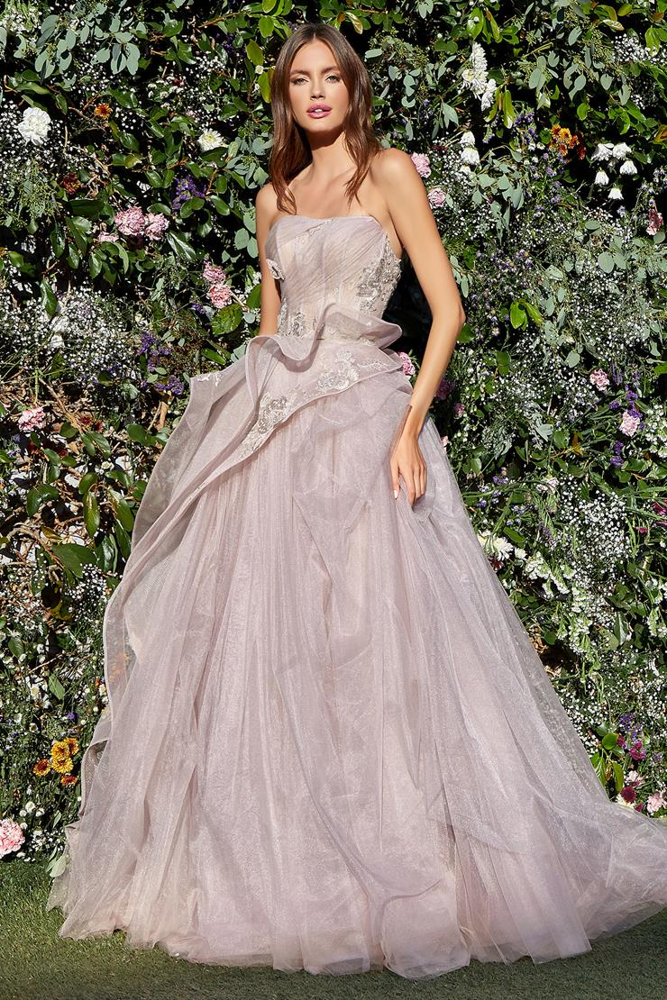 A&L Couture Style: A1021  Image
