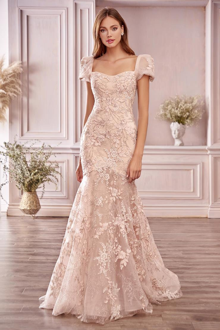 A&L Couture Style: A1025  Image