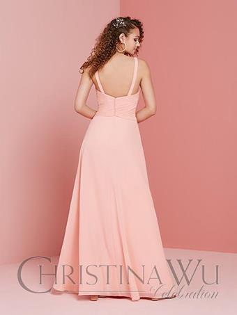 Christina Wu Celebration 22013