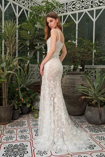 Dany Tabet #Coral