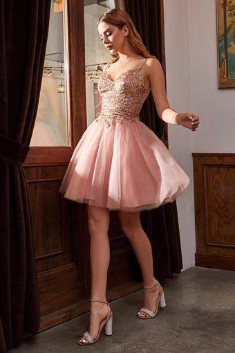 Cinderella Divine Style #9239