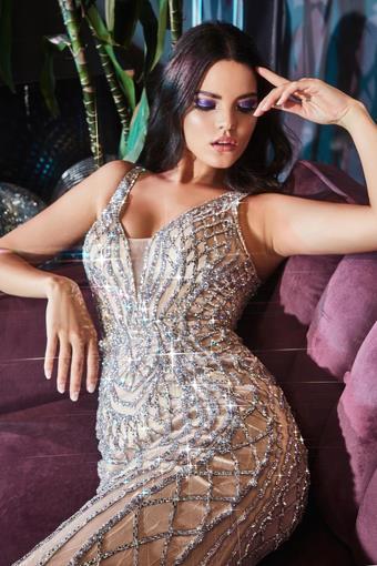Cinderella Divine Style #CD935