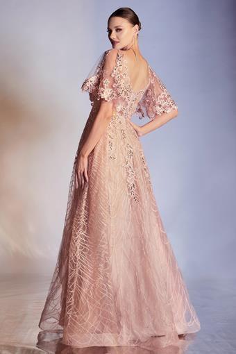 Cinderella Divine Style #CD950
