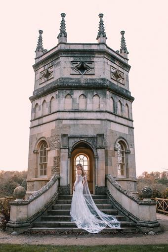 Disney Fairy Tale Weddings Style #D286
