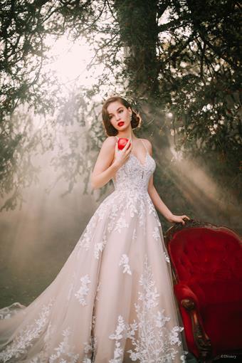 Disney Fairy Tale Weddings Style #D287
