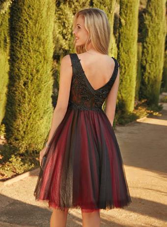 Susanna Rivieri Style #310192