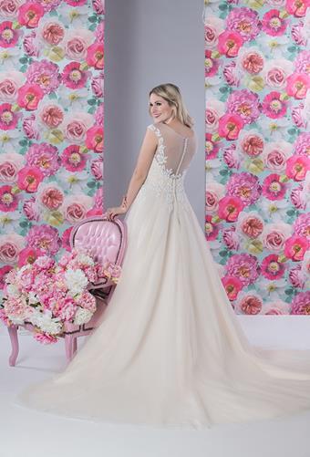 White Rose R1194
