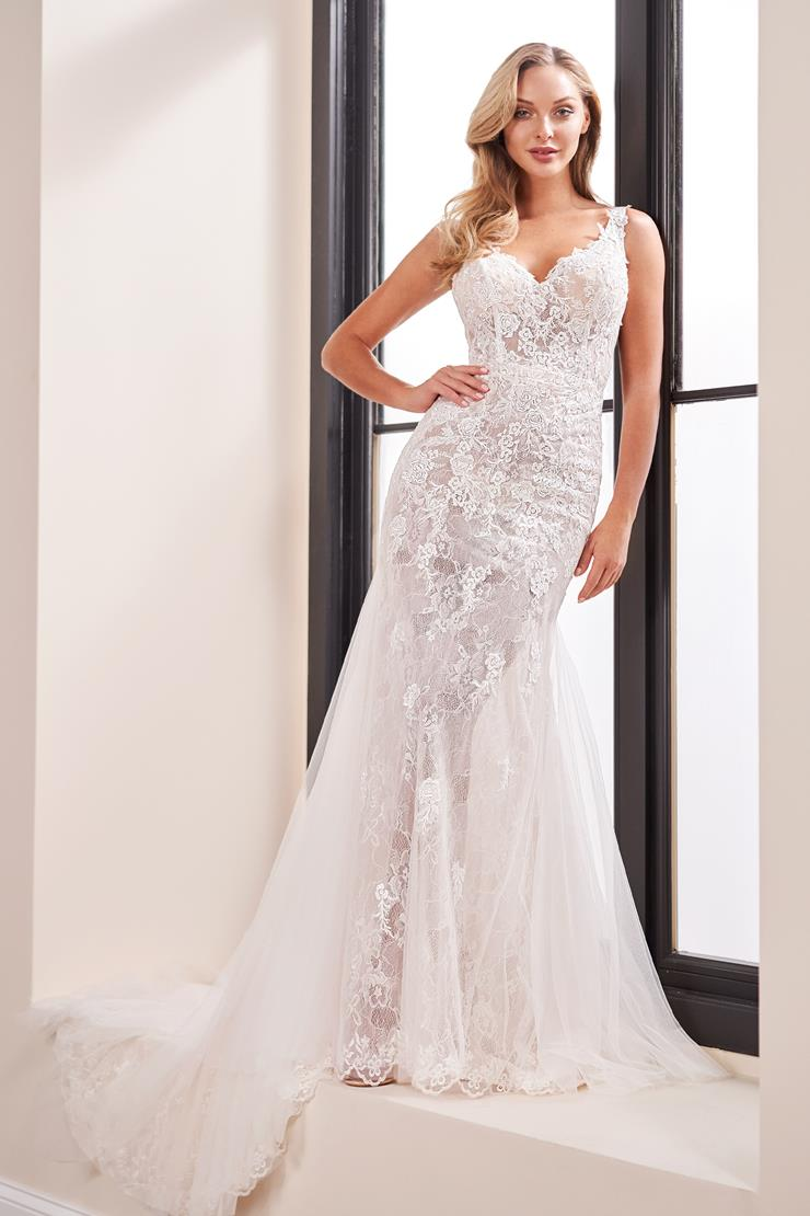 Sleeveless lace fit and flare with tulle skirt and sequin applique