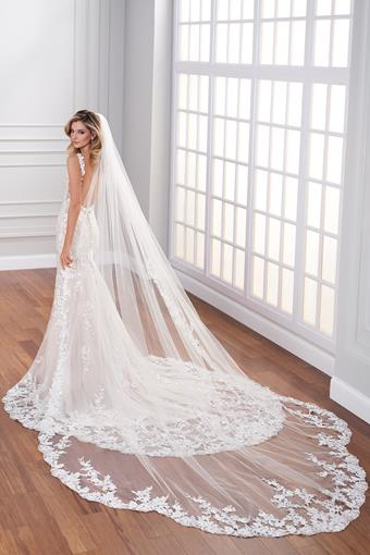 Cathedral length three-point petal veil with lace edge