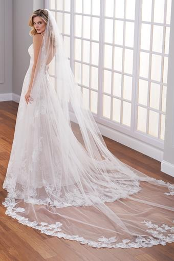 Lace edged chapel length veil with subtle shimmer