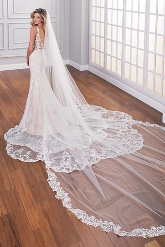 Lace edged cathedral length veil with subtle sequins
