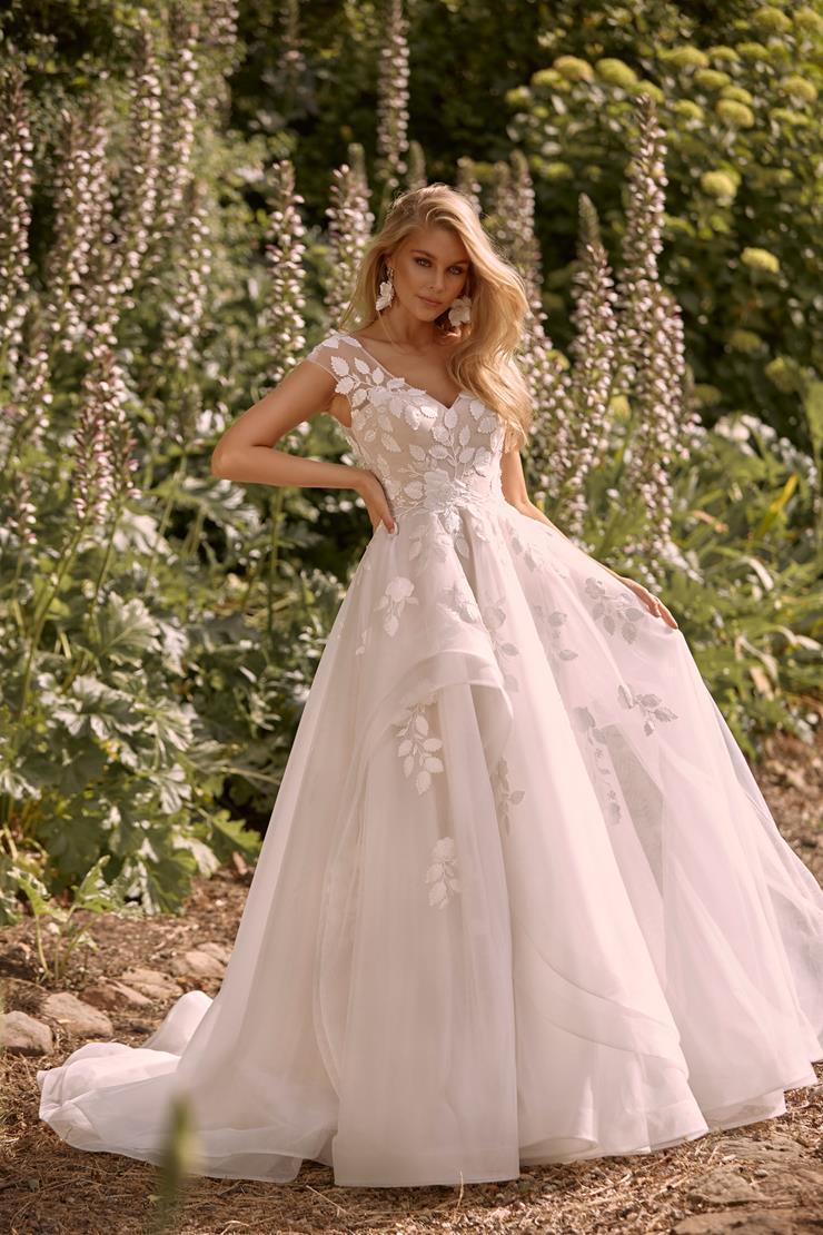Madi Lane Style Cassia