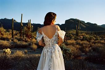 Allure Wilderly Bride Style F233