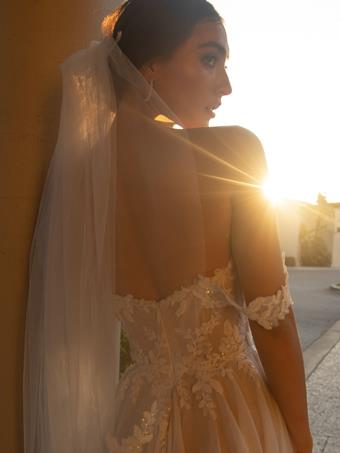 JH Bridal by Jimme Huang Style #VE-101021