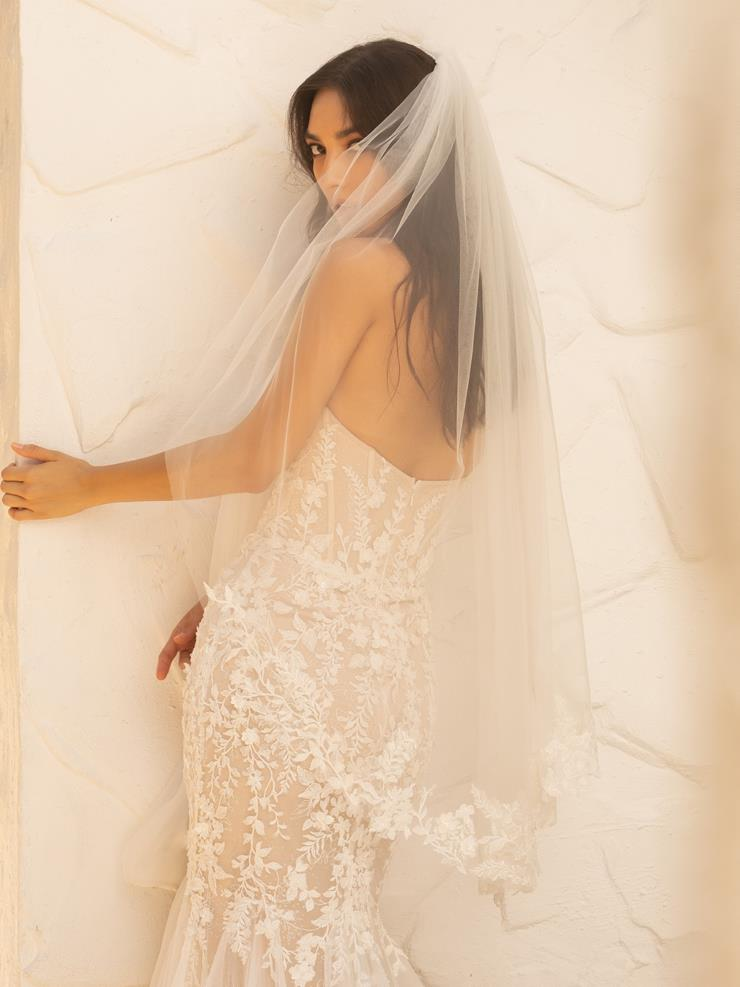 JH Bridal by Jimme Huang Style #VE-101030
