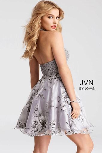 JVN JVN53061