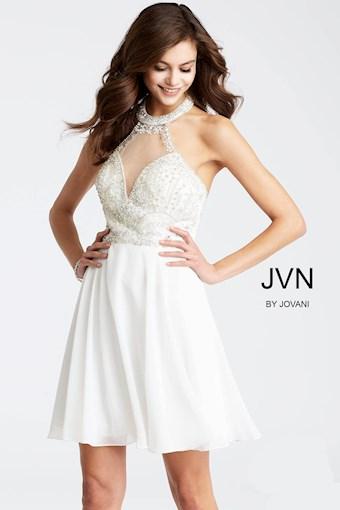 JVN JVN53169