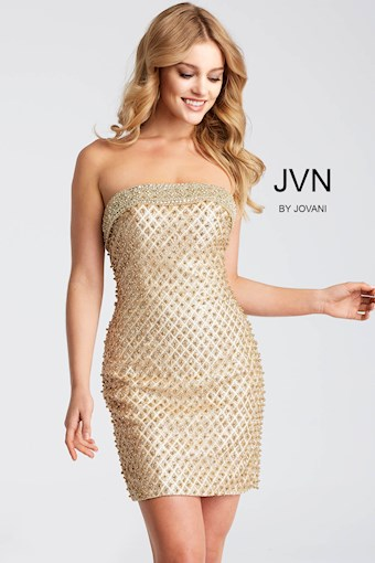 JVN JVN53341