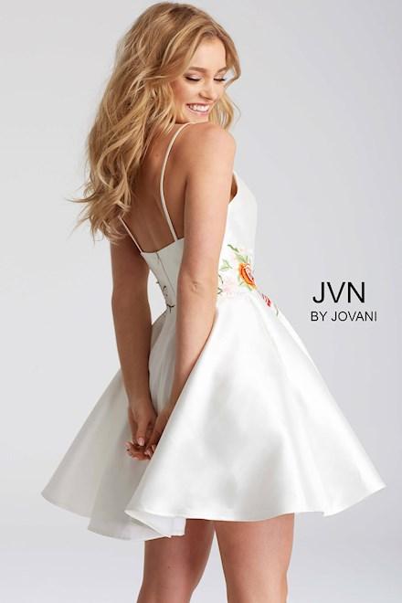 JVN56098