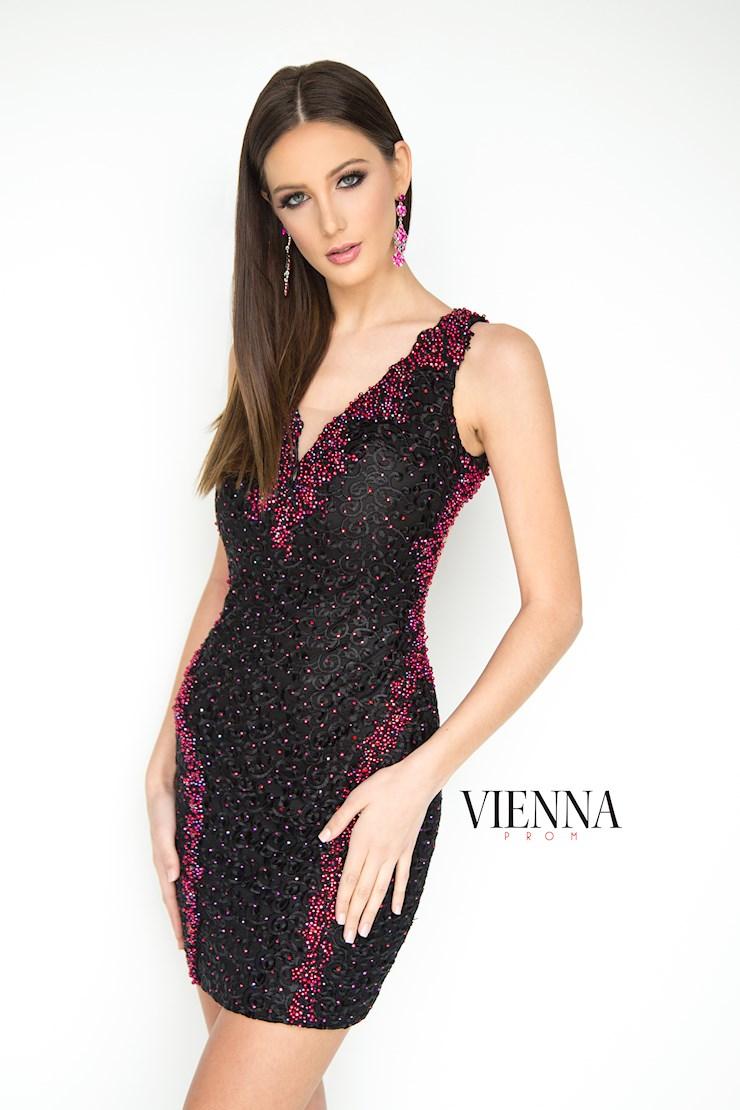 Vienna Prom 6071 Image