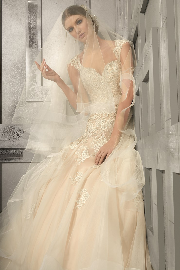 Morilee Style #8174 Image