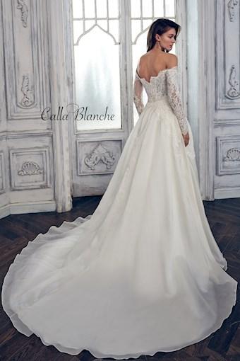 Calla Blanche 17108