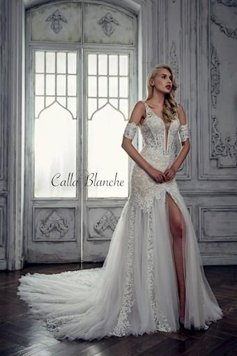 Calla Blanche 17114