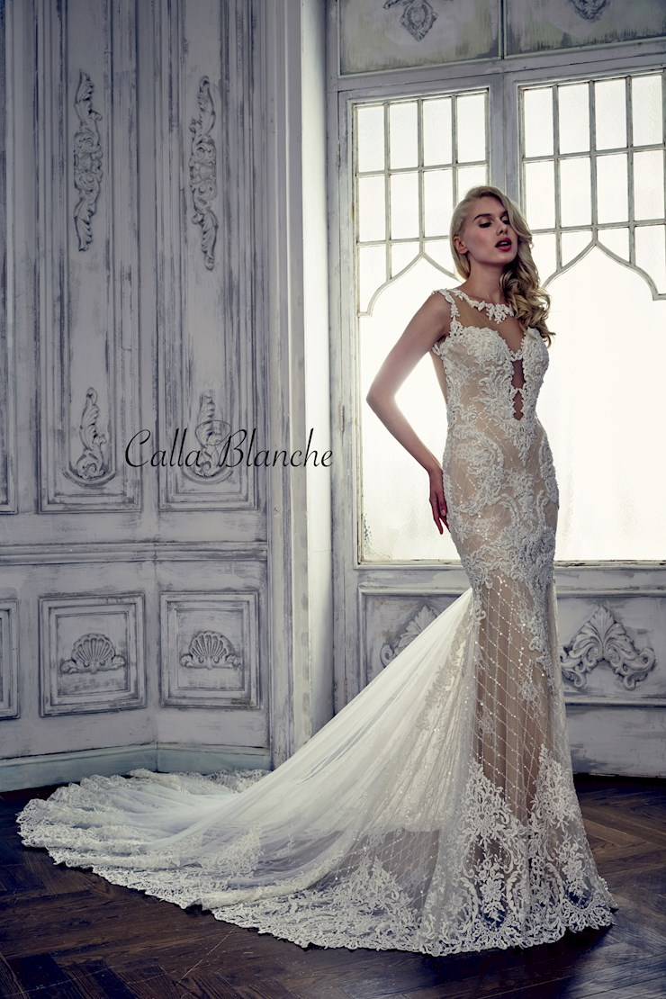 Calla Blanche Style #17116  Image