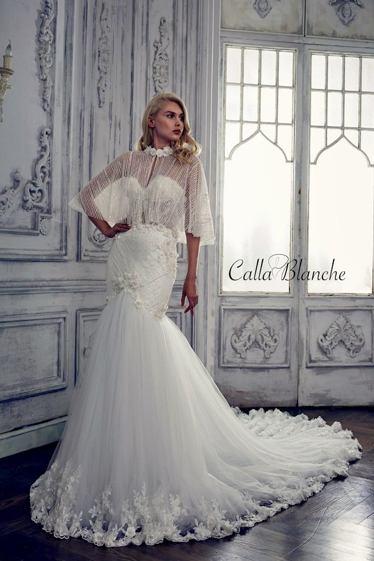 Calla Blanche 17122 Image