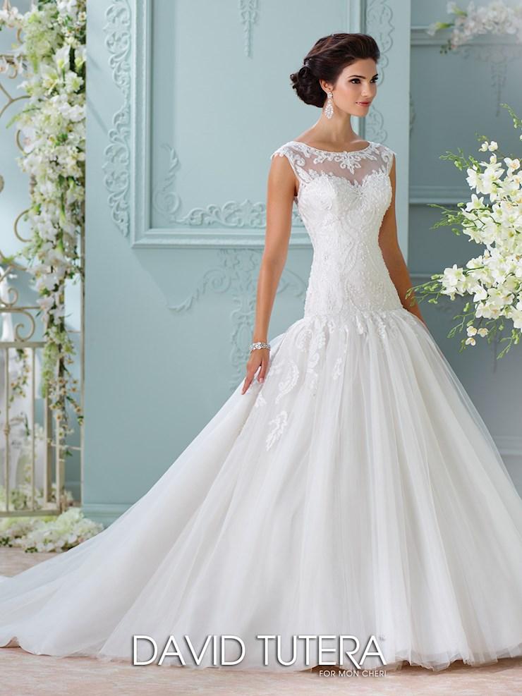 Fine David Wedding Dresses Images - Dress Ideas For Prom ...