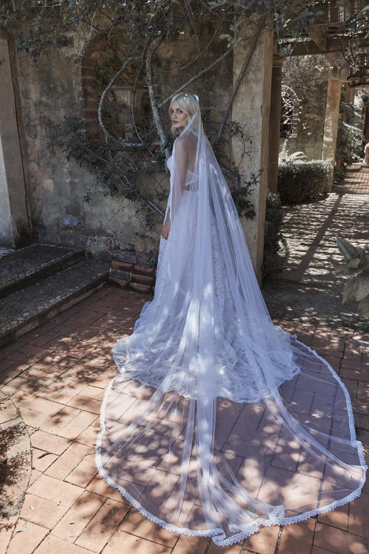 Evie Young Style #Lotus Veil Image