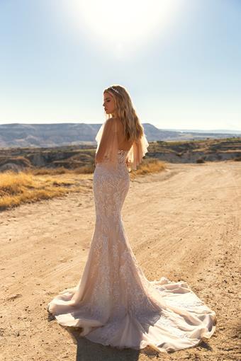 Elly Bride #Nicolette