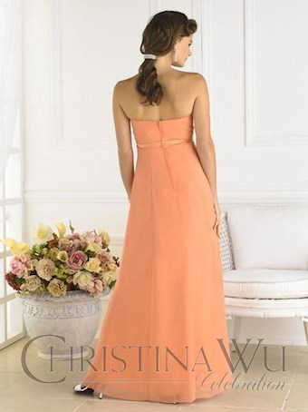 Christina Wu Celebration Style 22359