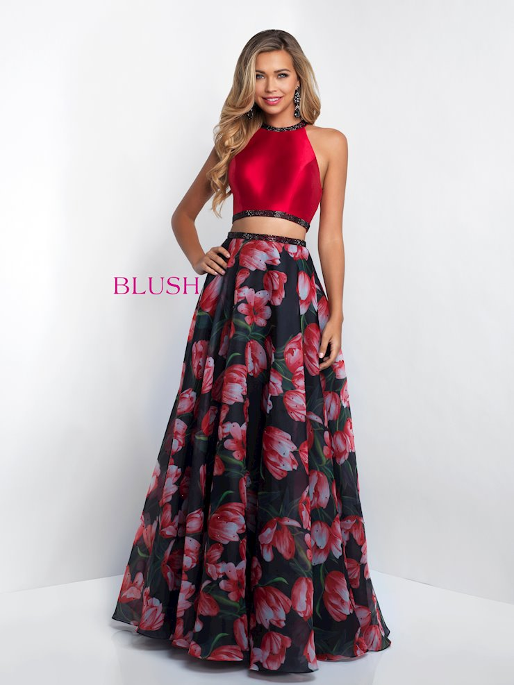 Blush 11534