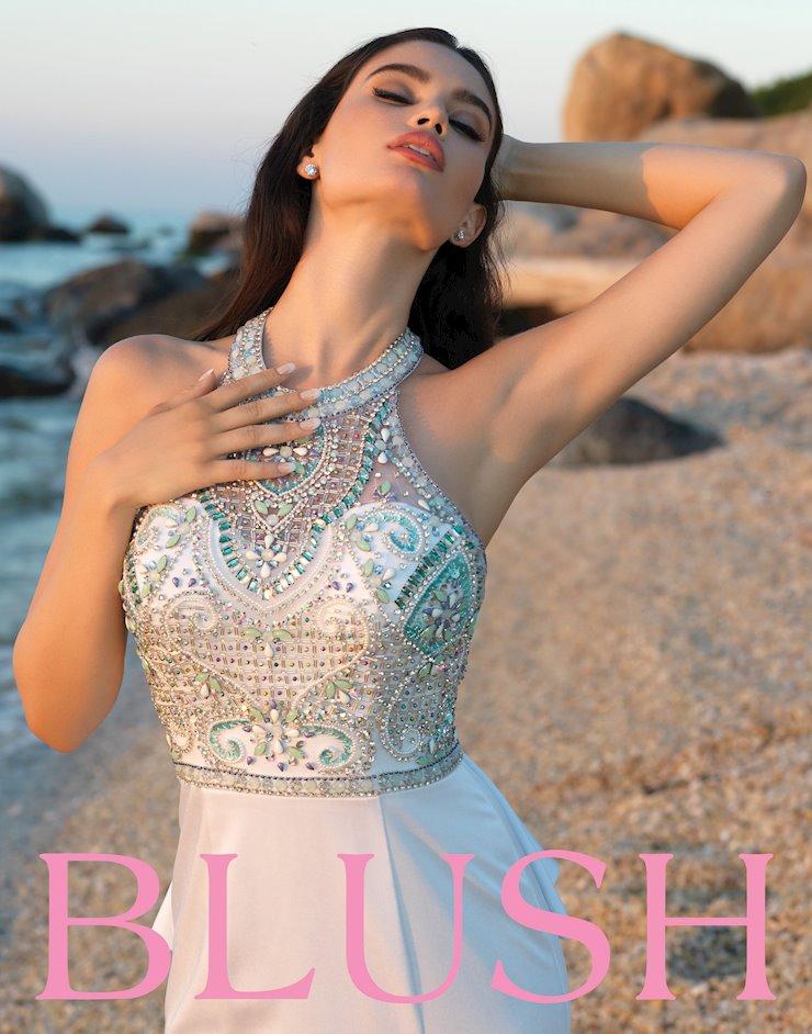 Blush C1028 Image