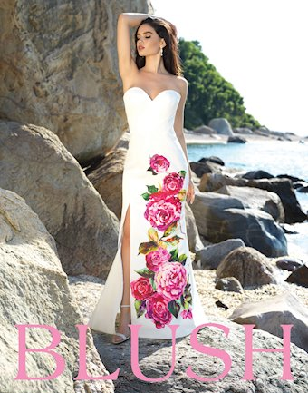 Blush Style #C1038
