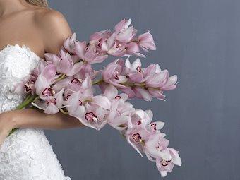 Allure Bridals Style #C487