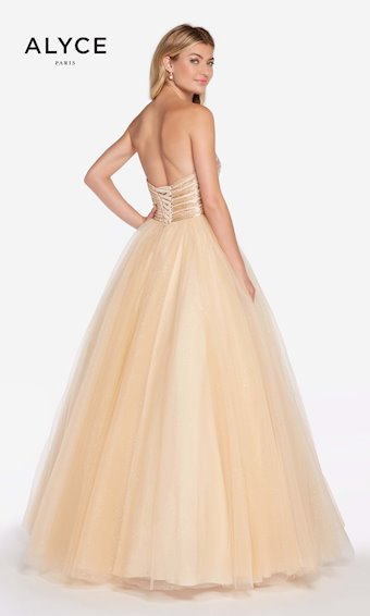 Alyce Paris Style: 60145