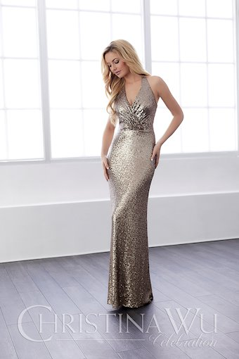 Christina Wu Celebration Style 22809