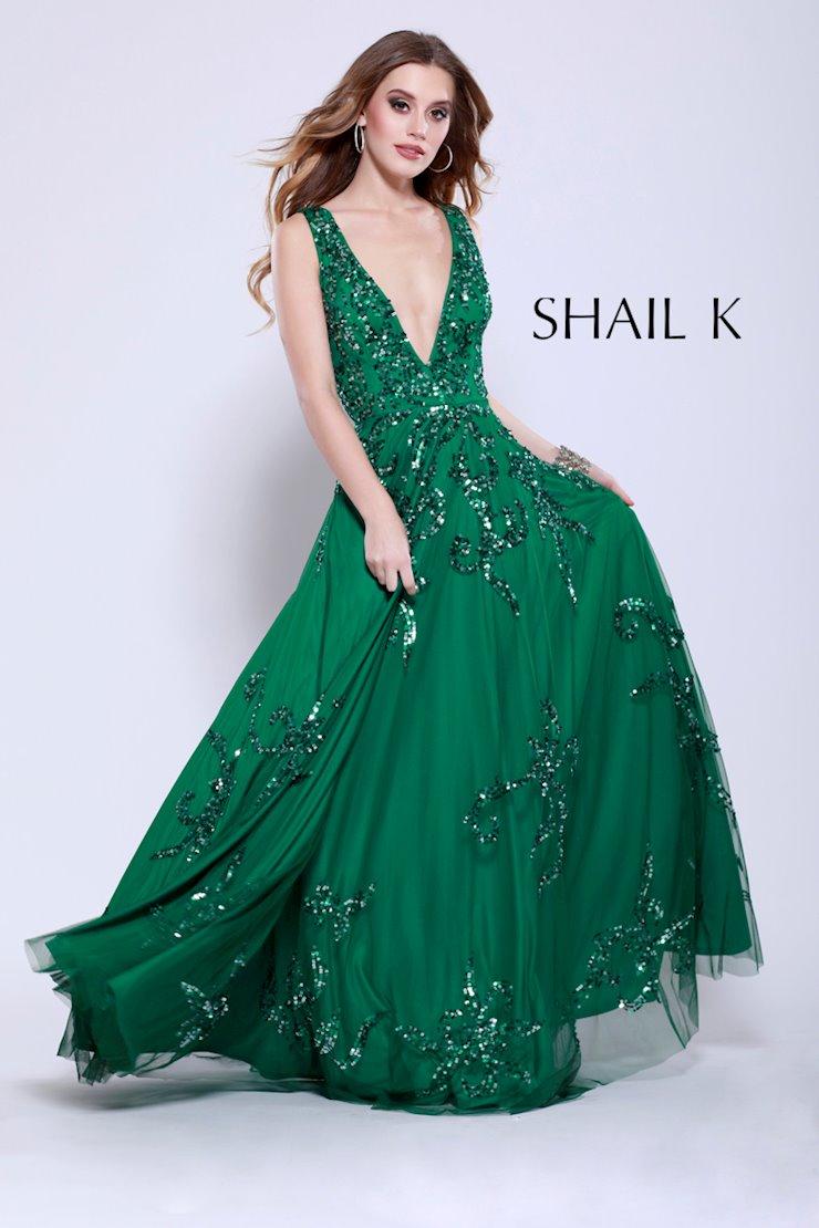 Shail K 12110