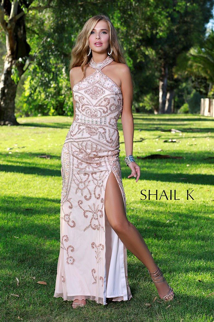 Shail K 12136