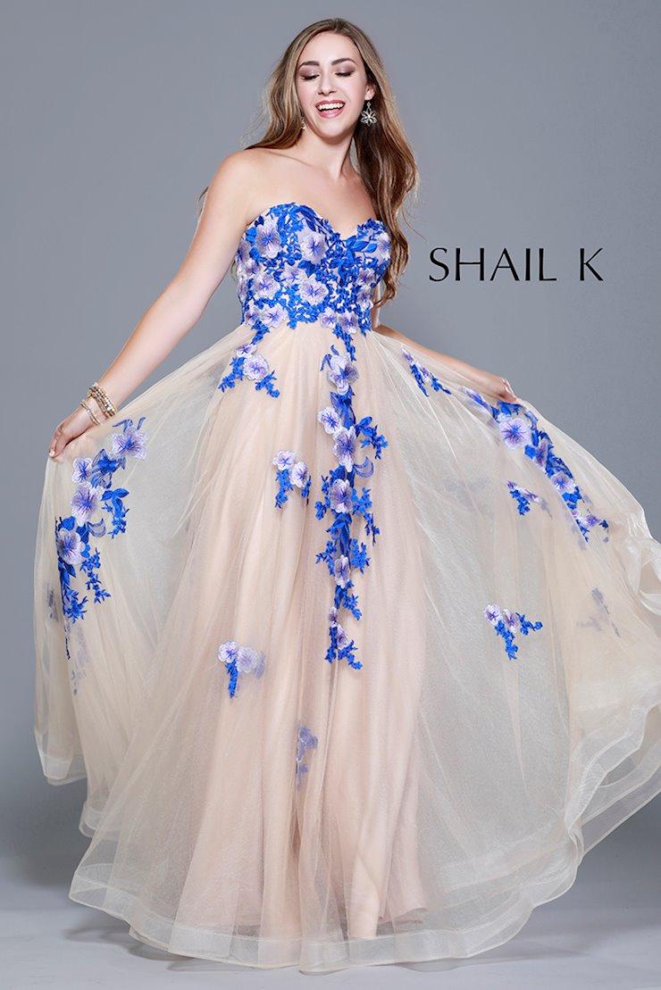 Shail K 33911
