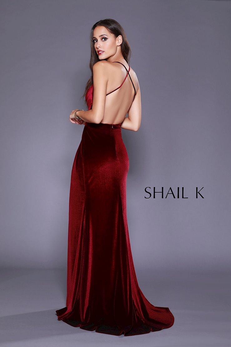 Shail K 33928