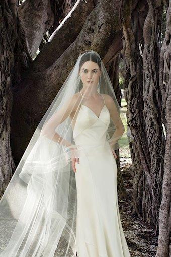 Toni Federici #Debutante