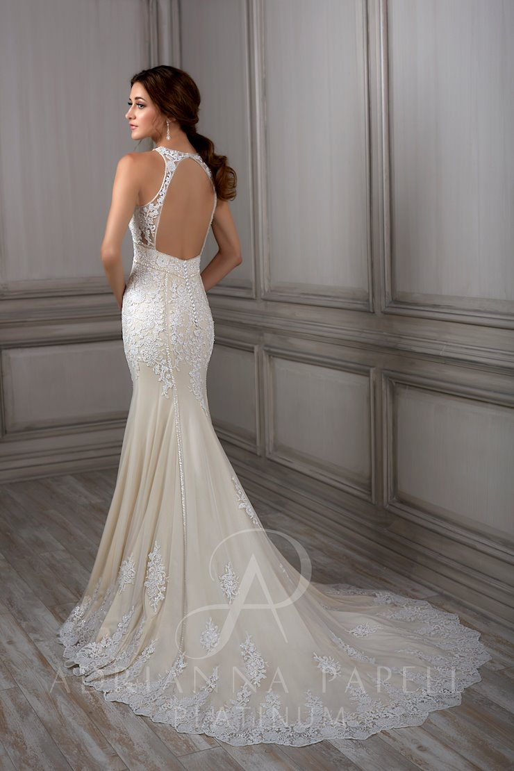 Adrianna Papell Style #31060 Image